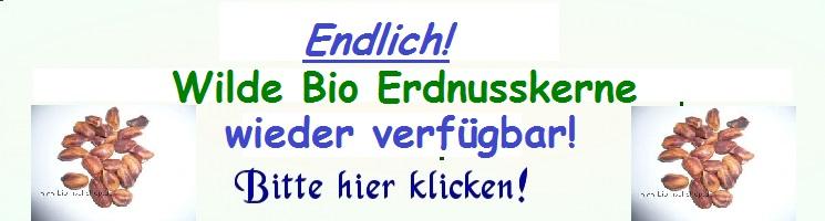 Wilde_Bio_Erdnusskerne