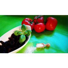Bio Tomatenhälften / -streifen, sonnengetrocknet