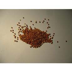 Bio Braunhirse ganz, Rohkostqualität