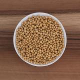 Bio-Sojabohnen aus Europa in Premium-Rohkostqualität